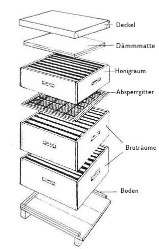 Beute schematisch